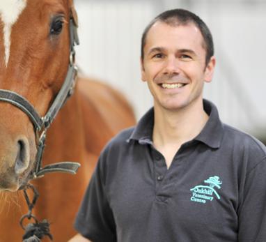 Guy Hinnigan Veterinary Surgeon