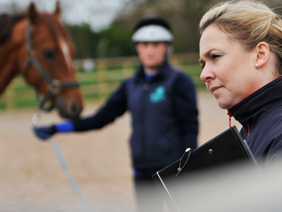 equine advice EQUINE VETS