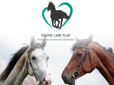 Equine Care Plans