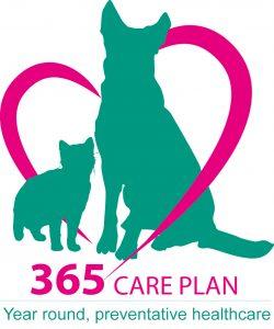 365 kitten vet plan
