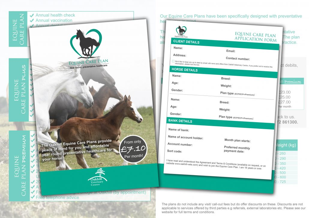 equine care plan - equine vets preston
