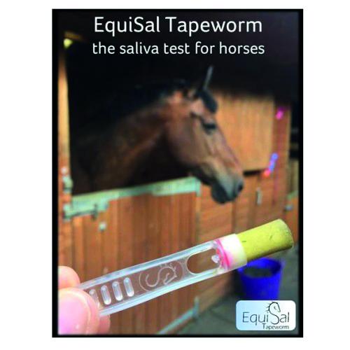 Equisal Tape Worm Testing