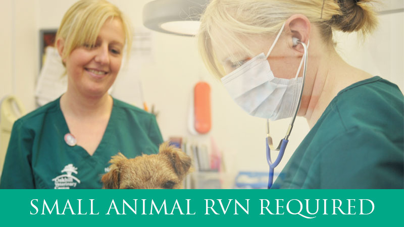 RVN required