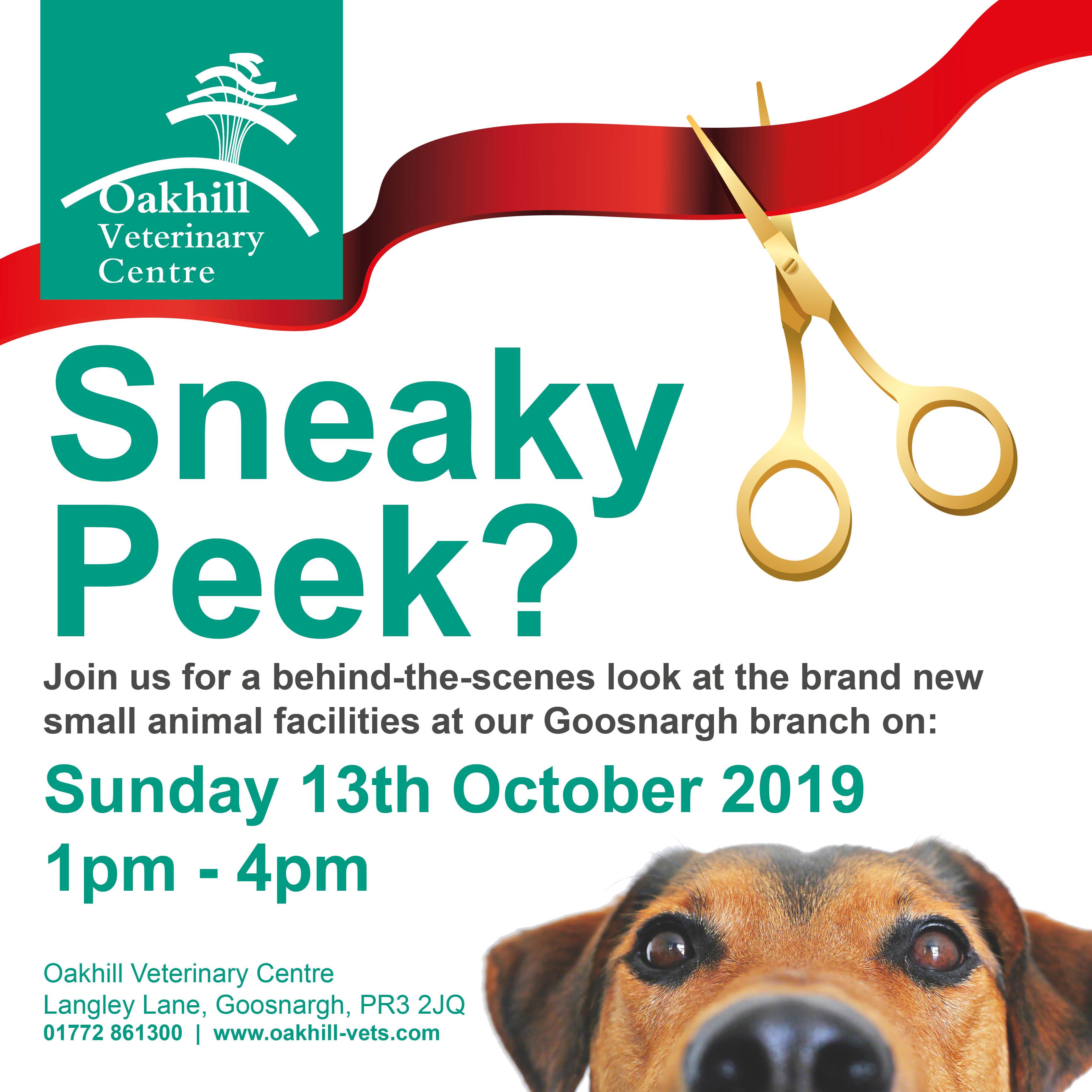 Sneaky Peek event
