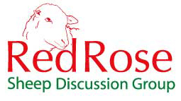Red Rose Sheep Discussion Group Logo
